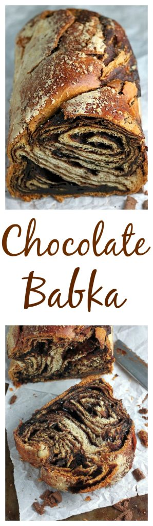 Chocolate Babka - with step by step photos to help you along the way!