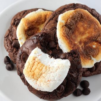 Double Chocolate Hot Cocoa Cookies