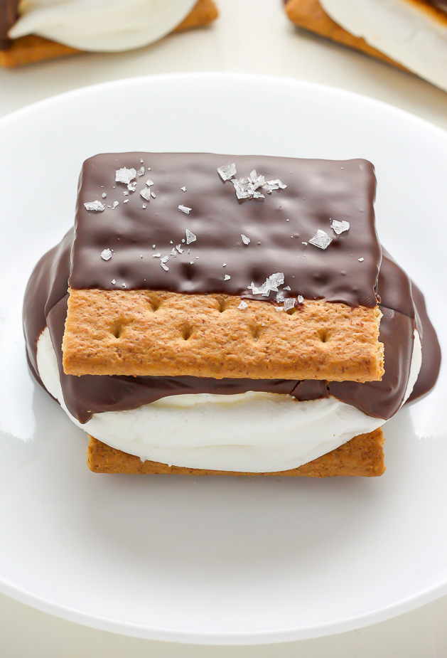 ... and short, my friends: Chocolate Covered S'mores = best thing ever