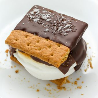 Chocolate Covered S'mores