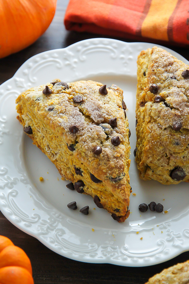 ... these tender pumpkin scones are exploding with mini chocolate chips