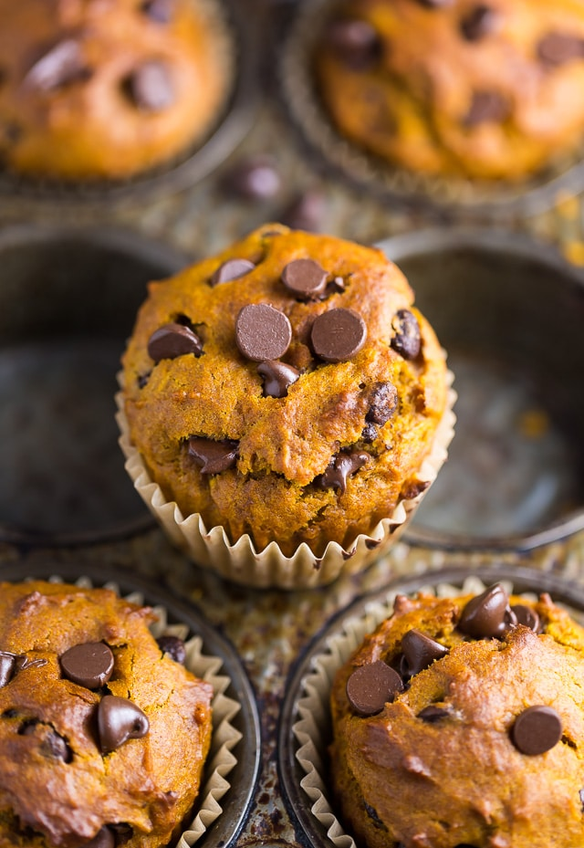 An easy recipe for Pumpkin Chocolate Chip Muffins and bread!