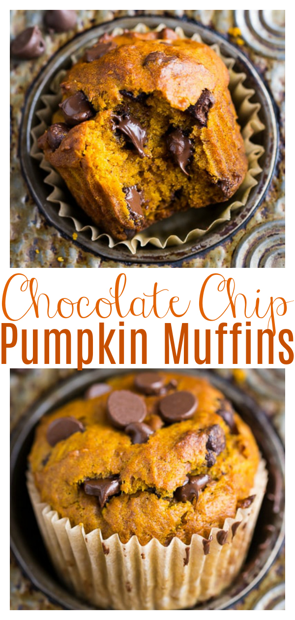 If you'e a pumpkin lover, you're in luck because this recipe makes Pumpkin Chocolate Chip Muffins AND bread! Moist, fluffy, and loaded with real pumpkin flavor! Perfect for breakfast or as an afternoon snack!