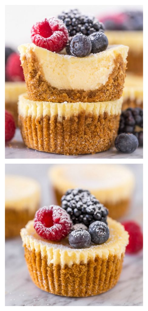 Mini Ricotta Cheesecakes are rich, creamy, and baked in a muffin tin! No water bath required for this mini cheesecake recipe. These little cuties are so perfect for parties and are always a crowd pleaser!