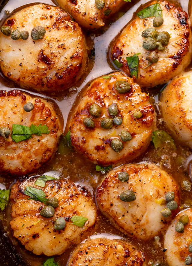 Perfectly pan seared scallops are served in a delicious white wine lemon caper sauce! This special occasion recipe is so easy and comes together in less than 20 minutes! Just be sure not to overcook your scallops, only cook for 1 minute and 30 seconds or so per side!