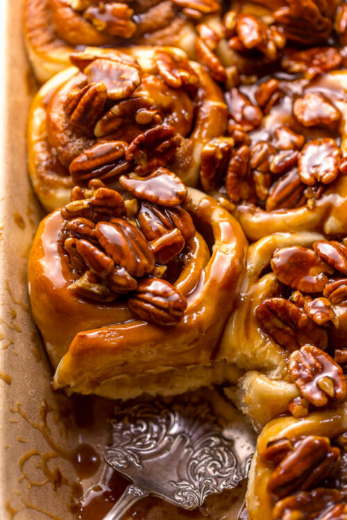 19 perfect pecan recipes you'll want to make over and over again this season!