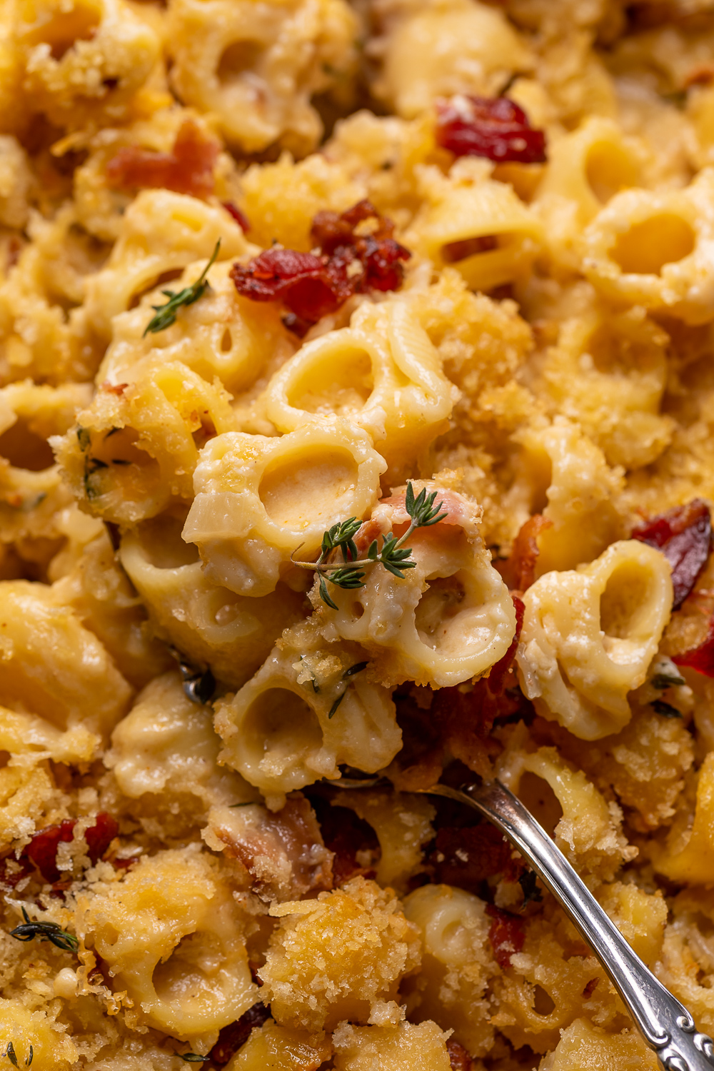 Elevated macaroni and cheese with bacon and gruyère is the perfect side-dish! It's great for special occasions like Thanksgiving and Christmas, or any night you're craving comfort food!
